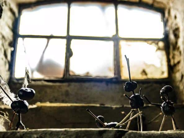 L'uomo delle castagne - pupazzetti - serie televisiva thriller - Netflix - magazine ilbiondino.org - ProsMedia - Agenzia Corte&Media
